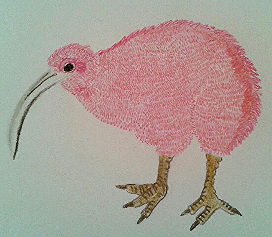 illustration au crayon de couleur réalisé par la barbichette représentant un kiwi, petit oiseau aujourd'hui disparu